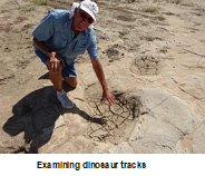 RV Rascals FCRV chapter, dinosaur tracks